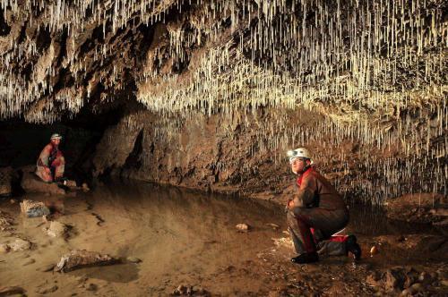 Brčková výzdoba v Demänovské jeskyni Míru - Foto Lukáš Kubičina
