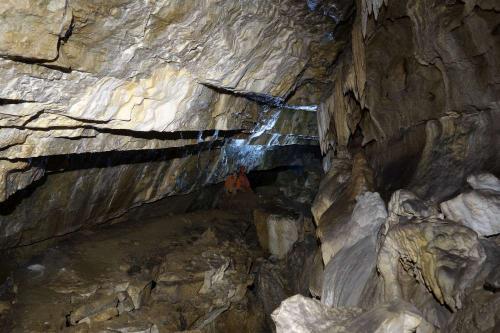 Prořícený strop v dolní Pusté