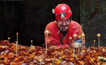 """Medvědí jeskyně """" Dóm Lukrecie + T.z.T. odhalili nový objev a spousty speleo pešláků """""""